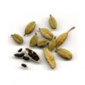 Cardamom - (Elettaria cardamomum) - 250g