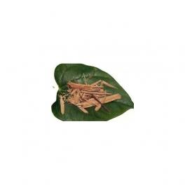 Marapuama Muira puama ((Ptychopetalum olacoides) Mother tincture 125ml