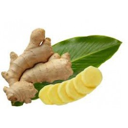 Ginger - Gengibre - (Zingiber officinale)  120 caps 300mg