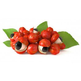 Guarana (Paullinia cupana)  100g  triturated