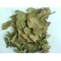 Jambul - Jambolao - (Syzygium cumini)  30g