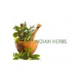 Indian Herbs - Black Salve 60g