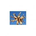 Devils claw - Garra do Diabo - (Harpagophytum procumbens) 120 Pills 300mg