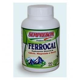 Iron-Calcium-Magnesium 90 pills