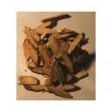 Licorice (Glycyrrhiza glabra)