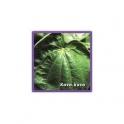 Kava Kava (Piper methysticum)  60 Pills 300mg